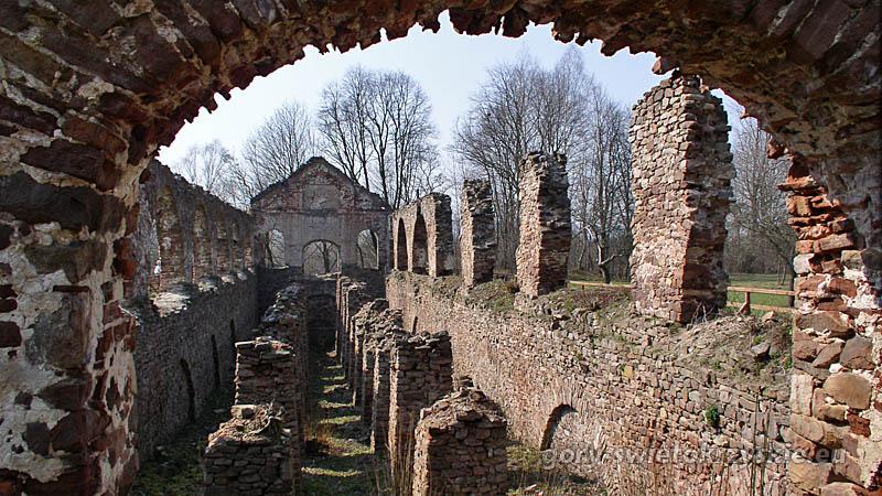 Ruiny zakładu wielkopiecowego w Bobrzy, fot. Michał Paszkowski